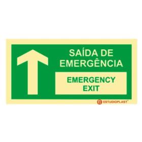 Sinalética Fotoluminescente|Saída de Emergência|Sinalização Segurança|Sinal de Saída de emergência Português e inglês frente